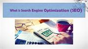 What Search Engine Optimization ppt vikas
