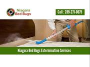 Niagara Bed Bugs - Professional Exterminaters & Bed Bug Heat Treatment