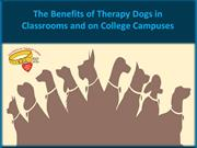 The Benefits of Therapy Dogs in Classrooms and on College Campuses