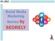 Social Media Marketing Service by Seorely
