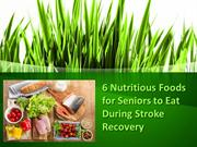 6 Nutritious Foods for Seniors to Eat During Stroke Recovery