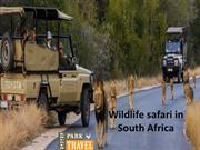 Wildlife safari in South Africa