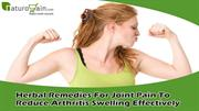 Herbal Remedies For Joint Pain To Reduce Arthritis Swelling
