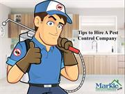 Tips to Hire A Pest Control Company