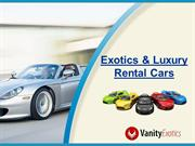 Exotics and Luxury Rental Cars