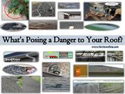 What's Posing a Danger to Your Roof