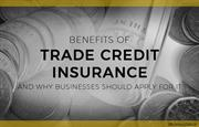 How Can Trade Credit Insurance Help Improve Business Competitiveness
