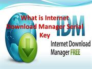 What is Internet Download Manager Serial Key