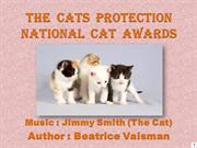 The  Cats  Protection National  Cat  Awards