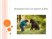 Introduction Of Adopt A Pet - East Dallas Pet Rescue