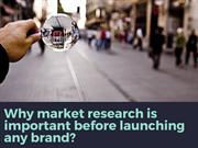 Why market research is important before launching any brand