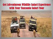 Get Adventurous Wildlife Safari Experience with Your Tanzania Safari T