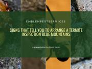Signs That Tell You to Arrange a Termite Inspection Blue Mountains