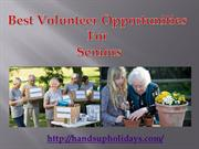 Best Volunteer Opportunities For Seniors