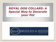 ROYAL DOG COLLARS A Special Way to Decorate your Pet