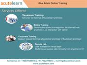blue prim online training