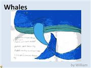 Whales by William
