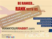 Most Popular Chat -Rank Your Rabbit