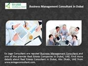 Top Management Consulting Firms in Dubai