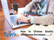 Wordpress Web Development Company - Wordpress Development Services