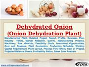 Dehydrated Onion (Onion Dehydration Plant)