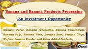 Banana and Banana Products Processing