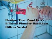 Reasons That Proof Every Efficient Plumber Baulkham Hills is Needed