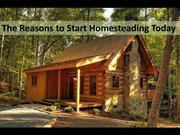 The Reason to Start Homesteading Today