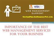 Importance of the Best Web Management Services for Your Business
