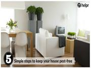 5 Simple steps to keep your house pest-free