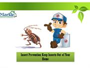Insect Prevention: Keep Insects out of your home