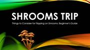 Shrooms Trip: Things to Consider for Tripping on Shrooms