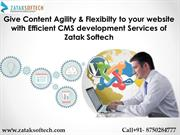 CMS development company India