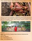 The Candid Theory Best Wedding Photographers in India