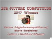 Big  Picture  Competition 2017 winners
