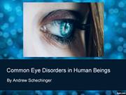 Eye Disorders in Human Beings By Andrew Schechinger
