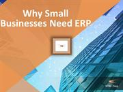 Why Small Businesses Need ERP