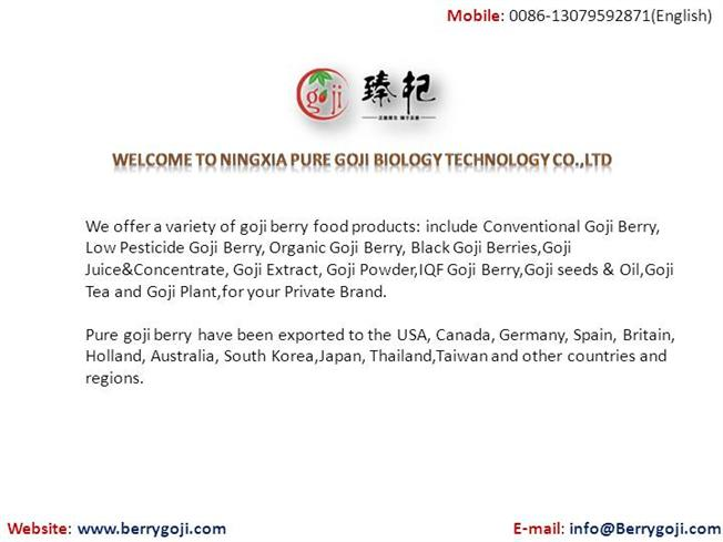 Wholesale Goji Berry Food Products Supplier From China Berrygoji