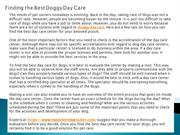 Finding the Best Doggy Day Care