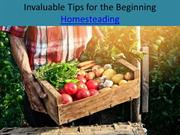 Invaluable Tips for the Beginning Homesteading