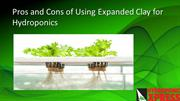 Pros and Cons of Using Expanded Clay For Hydroponics