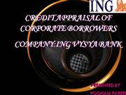 credit appraisal of corporate borrowers