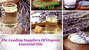The Leading Suppliers of Organic Essential Oils