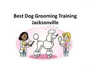 Best Pet Grooming Training, Best Pet Grooming  in Jacksonville Florida