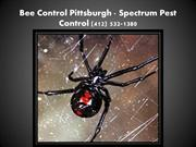 Pittsburgh Pest Control