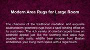 Modern Area Rugs for Large Room