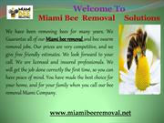 rofessional bee removals in Miami