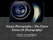 Nature Photography – The Finest Forms Of Photography!