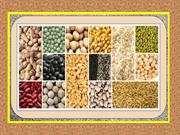 Importance of Agro Products – Addressing the Growing Needs For Fresh Q