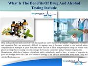 What Is The Benefits Of Drug And Alcohol Testing Include